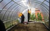 Теплицы для садового участка