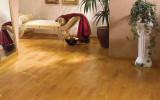 Ламинат – высококачественное напольное покрытие для любого помещения