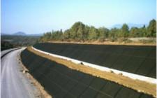 Что следует знать об укреплении грунта на участке?