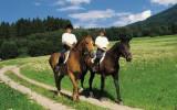 Соревнования по конному спорту в Липецке