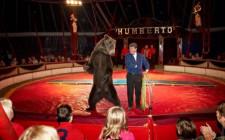 Наш любимый цирк