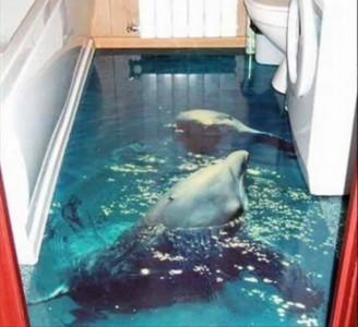 наливной пол с дельфинами
